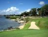 golf_diente_perro1.jpg