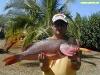 Pesca en Punta Cana