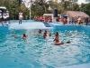 Nadar con delfines en Manatí Park Punta Cana