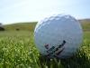 Golf en Punta Cana y en la República Dominicana